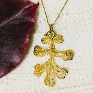 🎁 24K Gold Dipped White Oak Leaf 🍁 Silver Chain